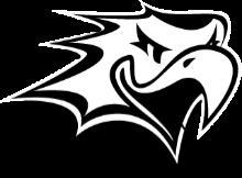 vaasan_sport_logo